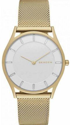 Часы SKAGEN SKW2377