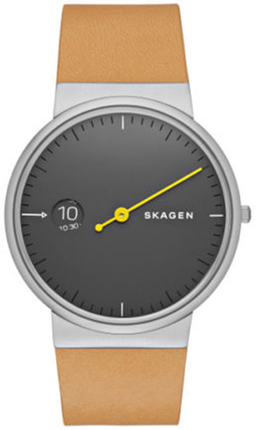 Часы SKAGEN SKW6194