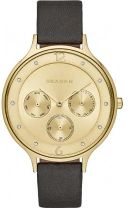 Часы SKAGEN SKW2393
