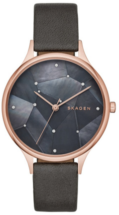 Часы SKAGEN SKW2390