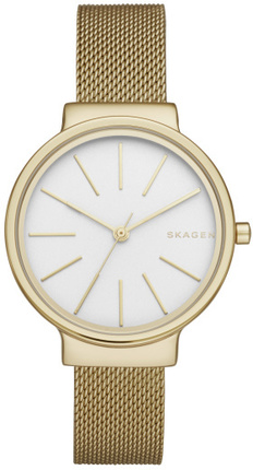 Часы SKAGEN SKW2477