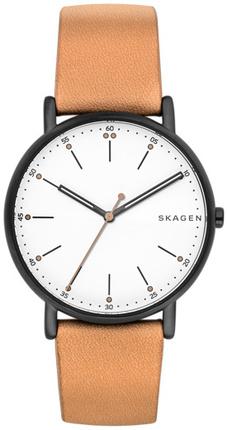 Часы SKAGEN SKW6352