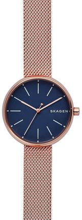Часы SKAGEN SKW2593