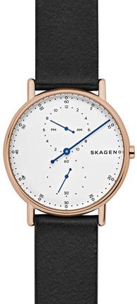 Часы SKAGEN SKW6390
