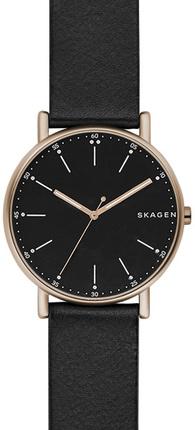 Часы SKAGEN SKW6401