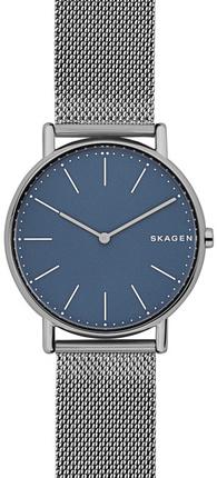 Часы SKAGEN SKW6420