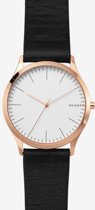 Часы SKAGEN SKW1102