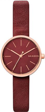 Часы SKAGEN SKW2646