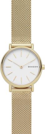 Часы SKAGEN SKW2693