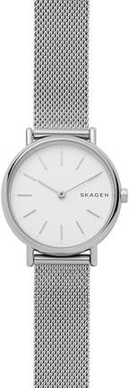 Часы SKAGEN SKW2692