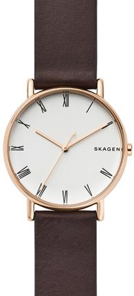 Часы SKAGEN SKW6493