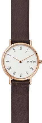 Часы SKAGEN SKW2760