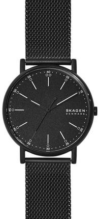 Часы SKAGEN SKW6579