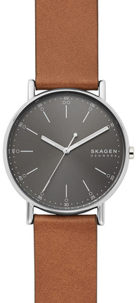 Часы SKAGEN SKW6578